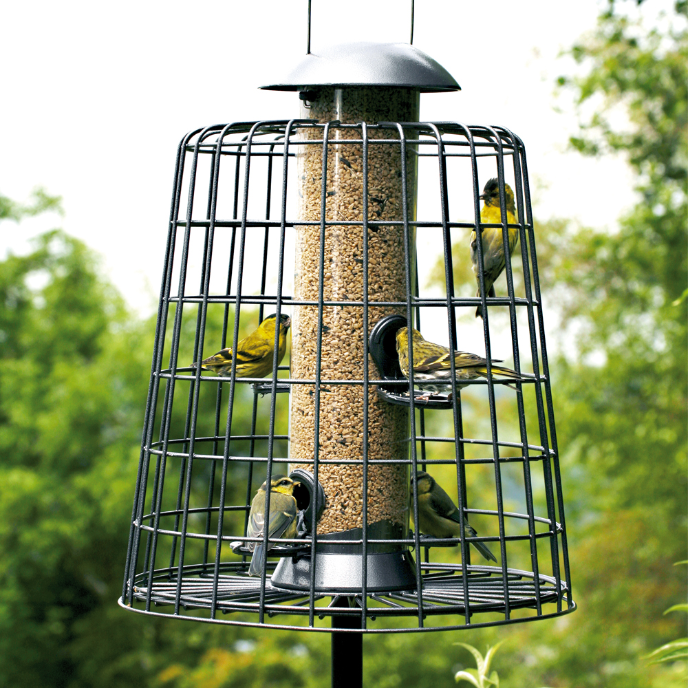 Image of Adventurer 4 Port Seed Feeder with Guardian