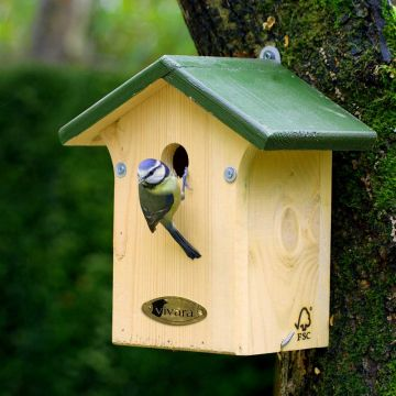 Bonaire 28mm Nest Box