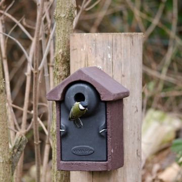 WoodStone®  Bilbao 32mm Nest Box