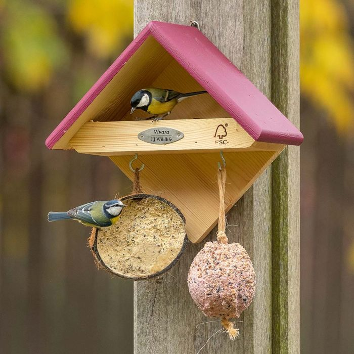 Yellowstone Feeder - Plum