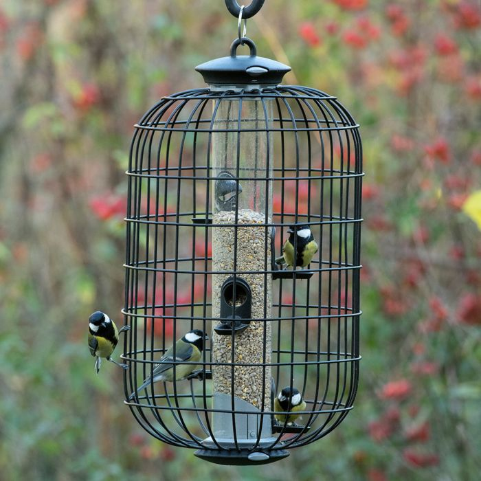 5 Port Apollo Bird Feeder with Guardian Pack