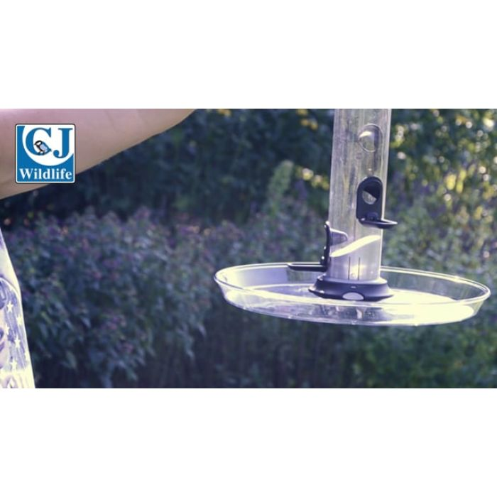 Apollo Seed Feeder Pack
