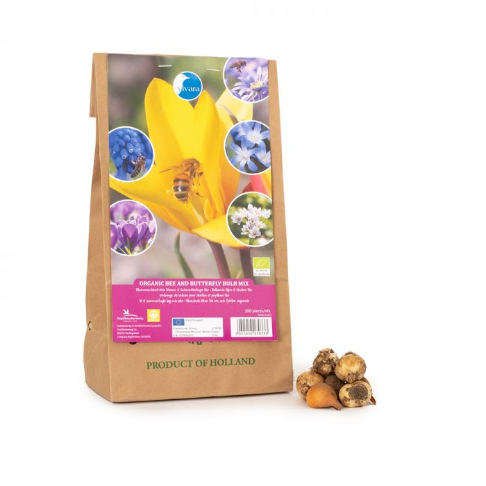 Bees and Butterfly Bulbs