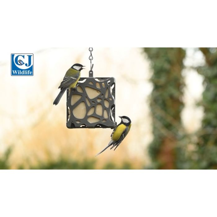 Fat Square Feeder Anna - 100% Recycled