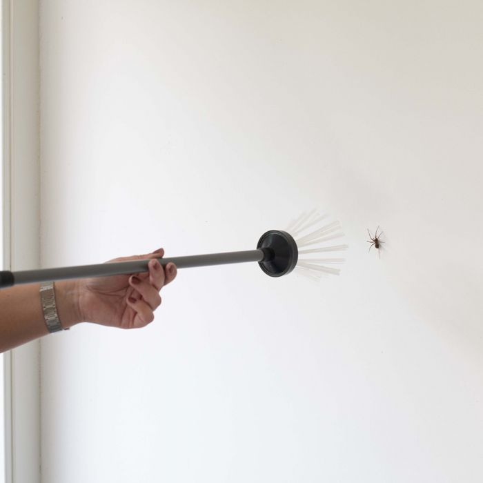 Spider Catcher - Bug Away Insect Remover