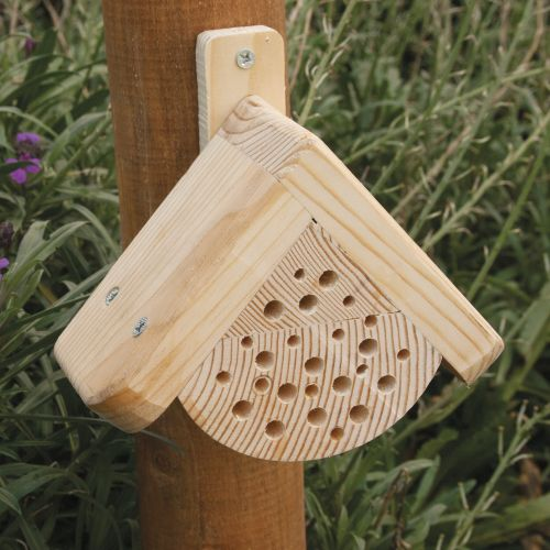Buzz' Mini Insect House