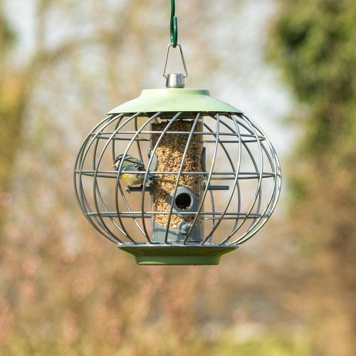 The Helix Seed Feeder