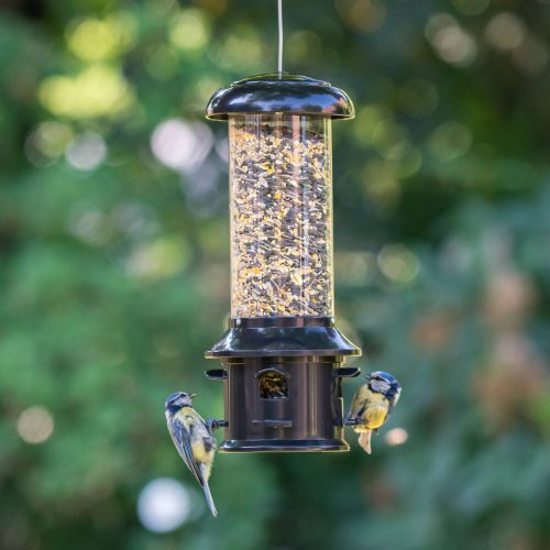 Seed Feeder for Small Birds