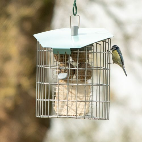 The Hexihouse Suet Cake and Fat Ball Feeder