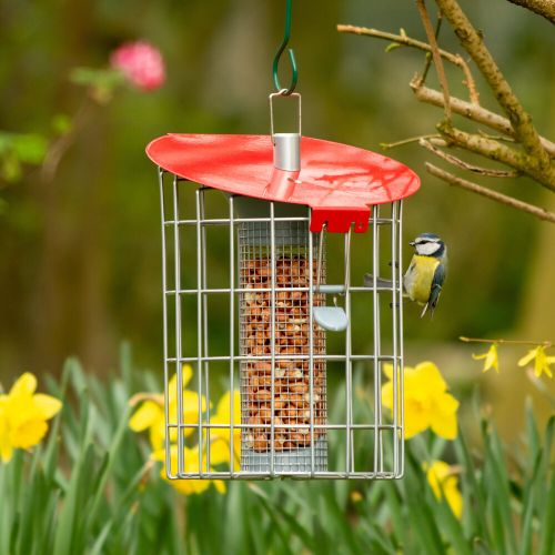 The Red Compact Roundhouse Peanut Feeder