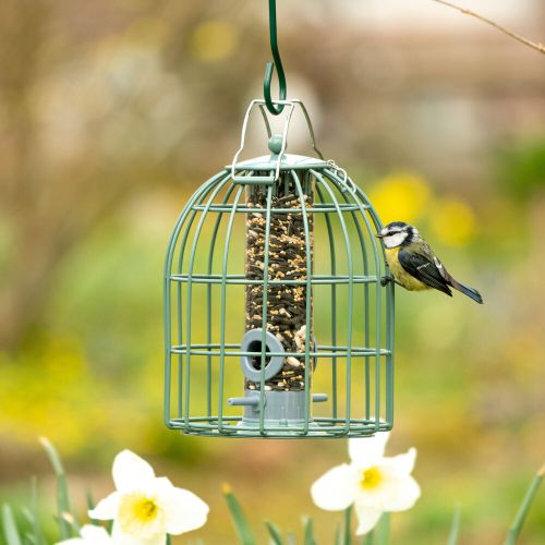 The Compact Seed Feeder