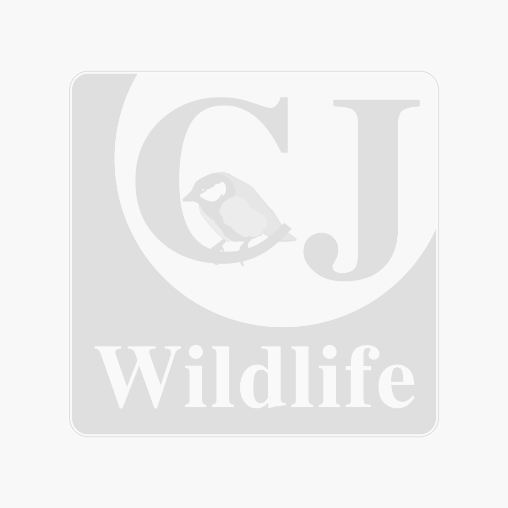 Kew Wildlife Care Collection - Hubbard Frog & Toad House