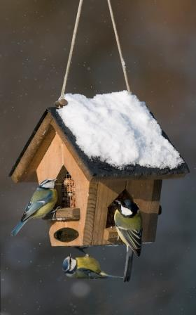 A bird feeder covered in snow