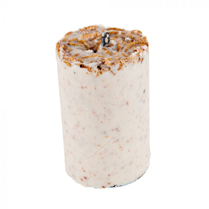 Peanut Cake Tube with Mealworms (500ml)