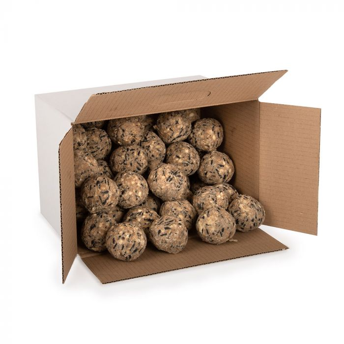 Box of 50 Ultimate Fat Balls