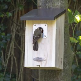 Fairbanks 32mm Nest Box