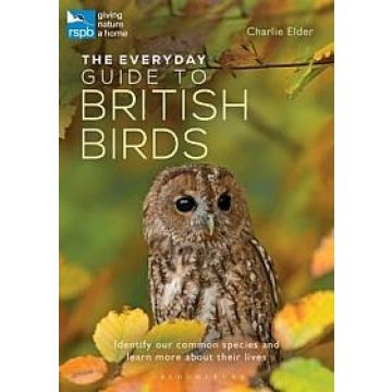 The Everyday Guide to British Birds Book: Identify Our Common Species and Learn More About Their Lives