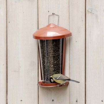 Delos Seed and Mealworm Feeder Red