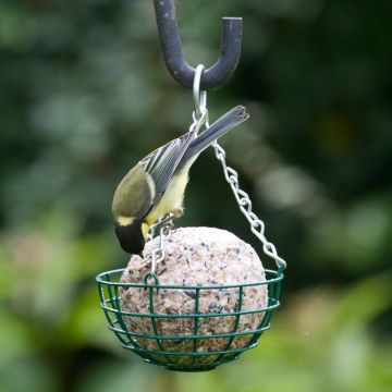 Giant Fat Ball Feeder (Green)