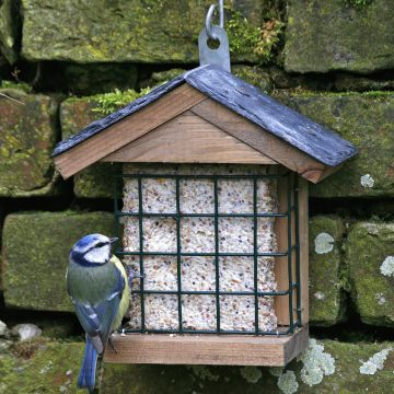 Ohio Slate Peanut Cake Square Feeder