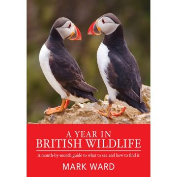 A Year in British Wildlife Book