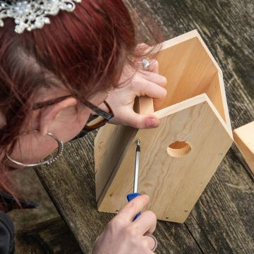 Build Your Own Nest Box Kit