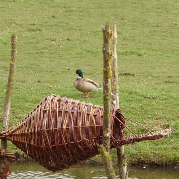 Round Duck Basket