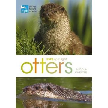 RSPB Spotlight: Otters Book
