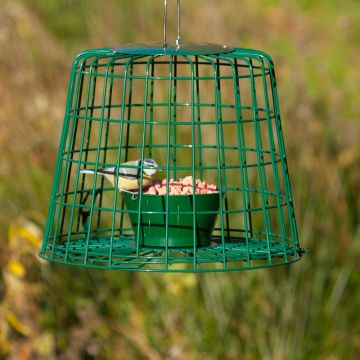 Suet Pellet & Mealworm Bird Feeder Guardian