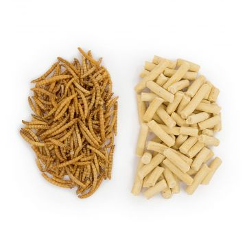 50/50 Pack Mealworm and Suet