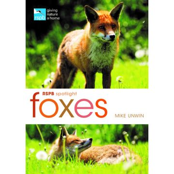 RSPB Spotlight; Foxes
