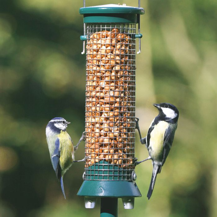 Small Green Defender Peanut Feeder