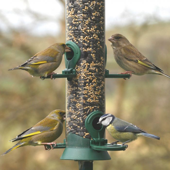 Green Challenger 4 port Seed Feeder