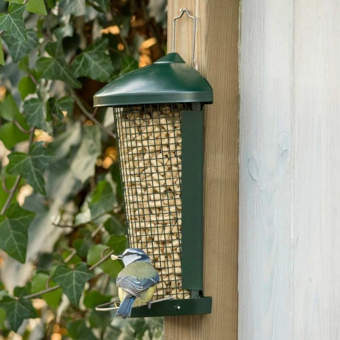 Suet Pellets with Insects