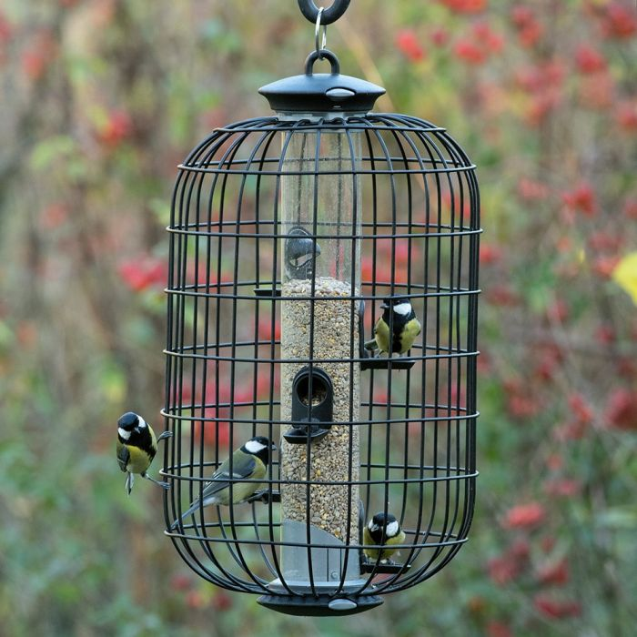 Apollo Guardian for 5 Port Seed Feeder (Cage Only)