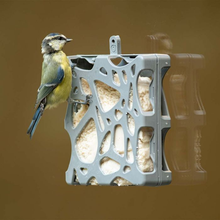 SingingFriend Anna Window Feeder Pack