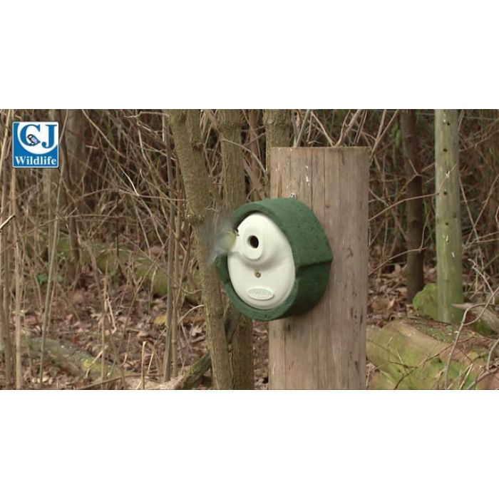 WoodStone® Alicante 28mm Nest Box (Green)