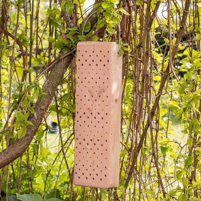 Sicily Insect Block