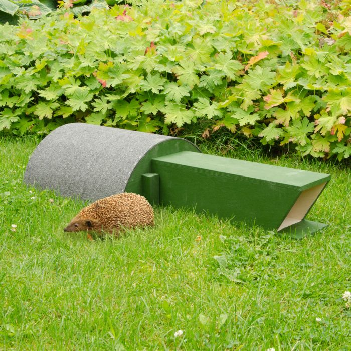 Hedgehog Feeding House