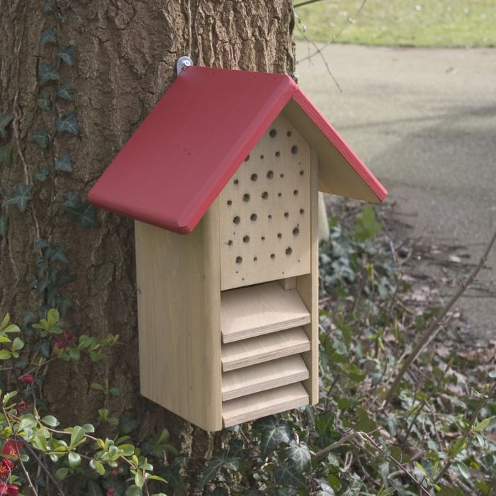 Duo-Insect & Ladybird House - Red Roof