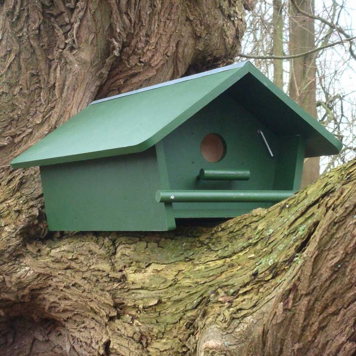 Little Owl Apex Nest Box