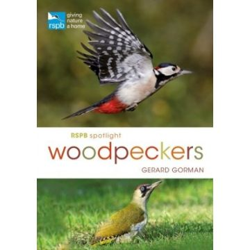 RSPB Spotlight: Woodpeckers