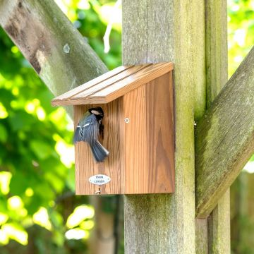 Dura Green Vancouver 32mm Nest box