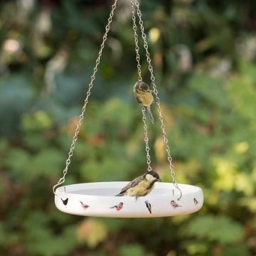 Garden Birds Water Dish