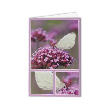 Small White Greeting Card